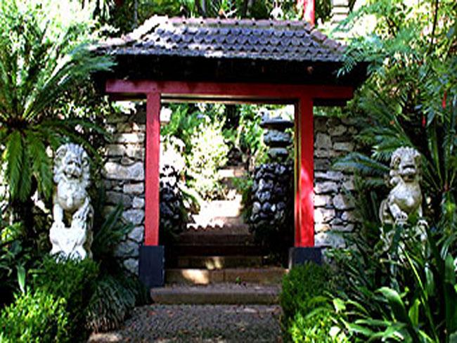 fotos de jardim tropical : fotos de jardim tropical: delas por exemplo tem a aparência de um dragão de mármore rodeado