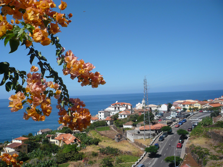 flores jardim do mar:Jardim Do Mar Madeira
