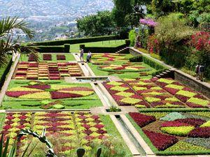Madeira Botanical Garden Jardim Botanico In Funchal